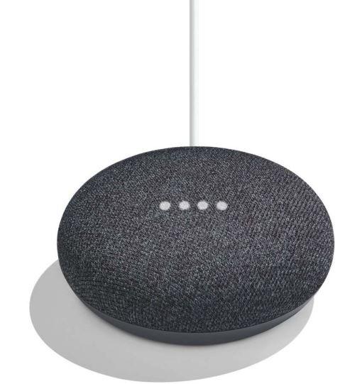Google Home Mini Assistant Vocal Charbon
